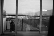 Photo31_30